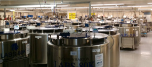 Over 60 Liquid nitrogen tanks with ???? sample capacity